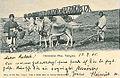 Chinesischer Pflug Tsingtau 1905.jpg