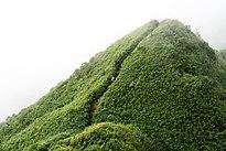 Tuyến độc đạo lên đỉnh Phan Xi Păng (độ cao 3.000m)