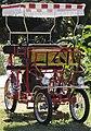 Ciclofan Sirenetta San Francisco Botanical Garden.jpg