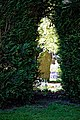 City of London Cemetery Yew hedge arch 1.jpg