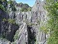 Cliffs at Vivian quarry - geograph.org.uk - 212069.jpg