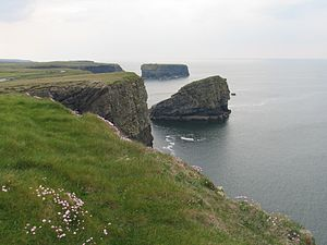 Kilkee (parish) - Cliffs of Kilkee