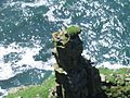 Cliffs of Moher 01.jpg