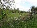 Clonmin Glebe - geograph.org.uk - 1876902.jpg