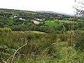 Cloughfin Townland - geograph.org.uk - 539565.jpg