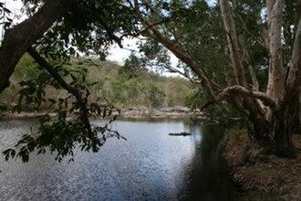 Coen River - Coen River