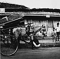 Collectie NMvWereldculturen, TM-20001941, Negatief, 'Een paard wordt op straat beslagen in de Jalan Jendral Sudirman', fotograaf Boy Lawson, 1971.jpg