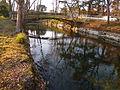 Colomiers - Parc du Cabirol - 20110211 (2).jpg