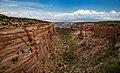 Colorado National Monument (9392909d-3471-4b1a-85e1-eb41b20f81b9).jpg