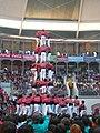 Concurs de Castells 2008 P1220457.JPG