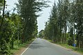 Contai-Digha Road - NH 116B - East Midnapore 2015-05-02 9319.JPG