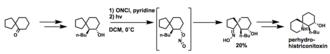 Barton reaction - A Barton reaction in the synthesis of perhydrohistrionicotoxin