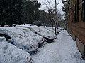Corso Carbonara - panoramio.jpg