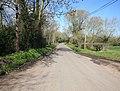 Country lane looking towards Newport - geograph.org.uk - 1804944.jpg
