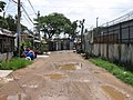 Countryside in the heart of the city, freed after 35 years of Saigon - panoramio.jpg