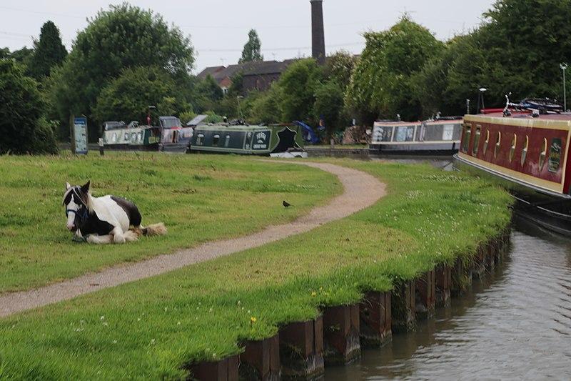 File:Coventry, UK - panoramio (4).jpg