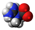Creatine zwitterion spacefill.png