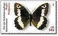 DPAG-2005-Schmetterling-WeisserWaldportier.jpg