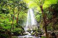 DSC00193 Java Center Tawangmangu Waterfalls Solo East (6223845585).jpg
