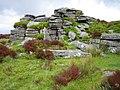 Dartmoor, Laughter Tor - geograph.org.uk - 434525.jpg