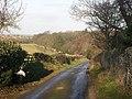Deer Park wall, Forcett Park, near Richmond, North Yorkshire - geograph.org.uk - 93861.jpg