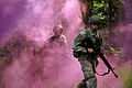 Defense.gov News Photo 110625-A-NY172-143 - U.S. Army officer candidates conduct squad movements and battle drills at Fort Pickett Va. during a regional field training exercise as part of.jpg