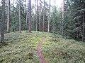 Degučių sen., Lithuania - panoramio (217).jpg