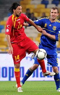 Dejan Damjanović Montenegrin footballer