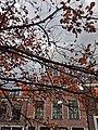 Delft 11 2014 - panoramio (7).jpg