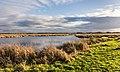 Delleboersterheide, natuurgebied van het It Fryske Gea. 25-12-2019. (actm.) 17.jpg