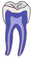 DentistryLogo.png