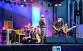 Detmold - 2014-08-09 - Michael van Merwyk & Band (17).jpg