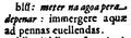 Dictionarium Annamiticum Lusitanum et Latinum, u-apex-acute.png