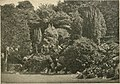 Die Gartenwelt (1902) (20298628283).jpg