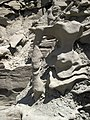 Differentially cemented & eroded sandstone (member C, Uinta Formation, Eocene; Fantasy Canyon, Utah, USA) 20 (24216316034).jpg