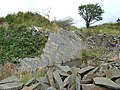 Disused small quarry face, Penuwch, Ceredigion - geograph.org.uk - 926269.jpg
