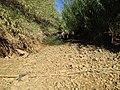 Dry Quarteira River, 03 October 2016.JPG