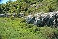 Dunham Dolomite (Lower Cambrian; Route 2 roadcut, southeast of the Lamoille River bridge, Vermont, USA) 5.jpg