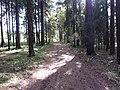 Dusetų sen., Lithuania - panoramio (120).jpg