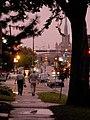 Dusky blinky Lyndale Avenue.jpg