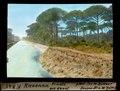 ETH-BIB-Ravenna, Pineta mit Kanal-Dia 247-F-00845.tif