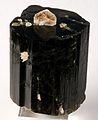 Elbaite-Muscovite-249650.jpg