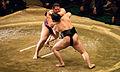 Endō vs. Satoyama 2014 Hatsu basho Tokyo 002.jpg