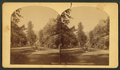 Entrance to Cheyenne Canon, by Wheeler, D. N. (Dansford Noble), 1841-1909.png