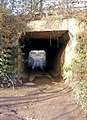 Entrance to tunnel under Bewdley Bypass - geograph.org.uk - 1118199.jpg