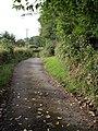 Erme-Plym Trail at Yeo Farm - geograph.org.uk - 1411265.jpg
