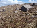 Erratics below Creag an Fhithich - geograph.org.uk - 779795.jpg