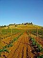 Estremoz - Portugal (3217820327).jpg