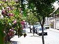 Eutin Rosenstadt (Eutin town of roses) - geo.hlipp.de - 3836.jpg