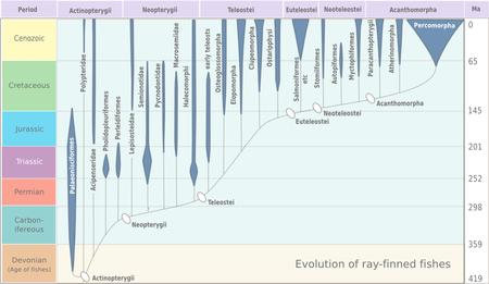carbon dating biology wiki